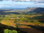 Views of the Constantia Valley Vineyards
