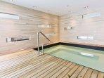 and spa pool plus sauna