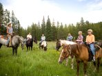Amazing Trail Rides - Only a 2 minute drive from the cabin
