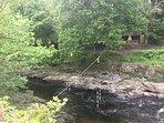 River Teifi footpath just down from Llandysul Bridge