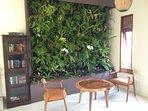 Enjoy great indoor wall garden