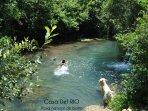 Piscina poza natural de baño de Reocin de los Molinos, casa rural y apartamento rural RIO'Casas PIN'