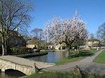 Bourton Spring
