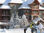 Village at Blue Mountain are a fantastic choice for a family ski vacation