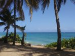 Ocean Park Beach - Steps away !