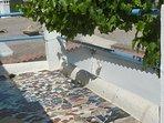 Tiled terrace with grape vine