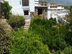 Fully enclosed garden ideal for a dog. Lemon tree, orange tree, plum tree and khaki