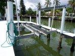 Electric boat lift