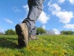 Walk the East Devon Way