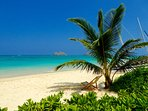 Miles of warm, soft sands and calm ocean. Beautiful sunrises and sunsets. The place to enjoy!