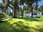 A 700sqm of forested area at your door step