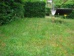 garden with hammock