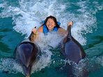 Swim with Dolphins at Dolphin Cove