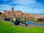 Dunbar harbour - home to the local seals