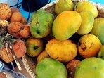 Les fruits du Papayer : mades et mangues. Bientôt les papayes.