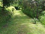 Grassy solar lighted walkway to casita.