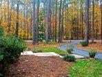Easy access circular driveway