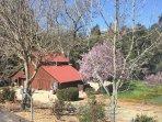4BR Wine Country Getaway at Creekside Estate, On Westside Wine Trail