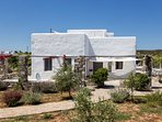 the villa is surrounded by a herb garden with olive trees