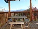 Front corner of deck with picnic table