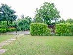 Side lawn 4