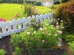 Le jardin et les fleurs