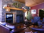 comfortable living room with gas fire place and satellite TV