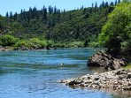 Our ranch runs along the Sacramento River and 1 mile to Shasta Lake. Bring your boats for extra fun.