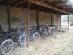 mountain bikes free to guests