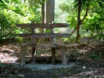 Beautiful places to sit and take in the views throughout the wooded property.