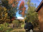Fall is pretty in VT