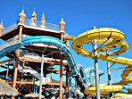 Schlitterbahn, the Hottest, Coolest Time in Texas - In New Braunfels, 20 minutes from Texas Rose