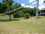 Fun Volleyball Area