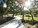One Acre of Hill Country Land
