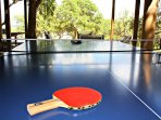 Ping Pong Table for Age- Old Rivalry Matches
