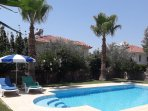 big privet pool  and garden