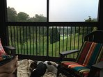 We are dog friendly. Our 2 beagles enjoy napping on the porch while we enjoy coffee and the Smokies