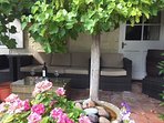 Out side seating with grape vines. Enjoy a glass of wine