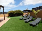 Newly Grassed Garden with Relaxing Sunbeds