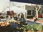 More Farmers Market Day