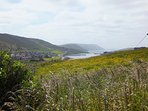 View looking south towards Scalloway from the garden