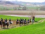 equitazione tra le colline di Tonco