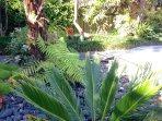 Relaxing garden surrounds