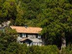 Cedro - Ribeiro Frio Cottages