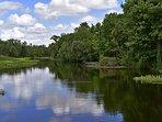 lovely Wekiva River