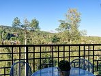 Catch a glimpse of Wilson Peak from one of your private balconies.