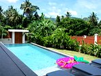This is a view from the terrasse table with exotic garden and old coconut tree view for the back gr