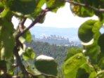 la Cité de Carcassonne vue au loin de la terrasse