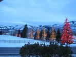 View in the winter of ski slopes. Neighbor lights up all the trees across the way during the holidays. Quite...