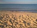 Golden sands of Ostend Beach